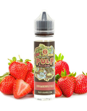 le-chat-qui-vapote-strawberry-field-pulp-001